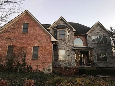 Lyon Twp Single Family Home For Sale: 25336 Johns Road