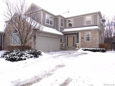 Rochester Hills Condo/Townhouse For Sale: 2441 Winding Brook Court