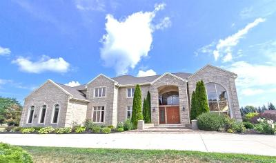 Bloomfield Twp Single Family Home For Sale: 4015 Golf Ridge Drive E
