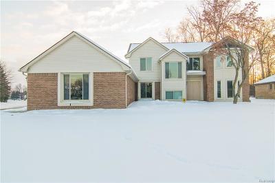 Farmington Hills Single Family Home For Sale: 38011 Eric Court