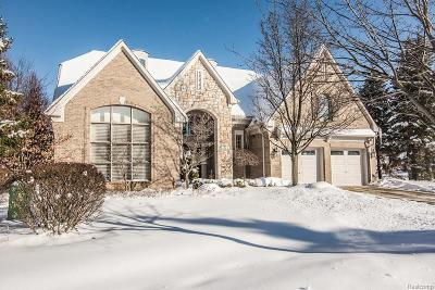 Troy Condo/Townhouse For Sale: 4020 Chatfield Lane