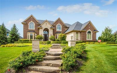 Northville Single Family Home For Sale: 18705 Marble Head Drive