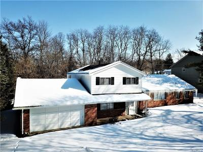 West Bloomfield, West Bloomfield Twp Single Family Home For Sale: 5585 Halsted Road