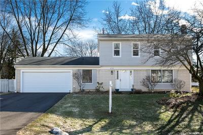 Novi Single Family Home For Sale: 40531 Village Oaks