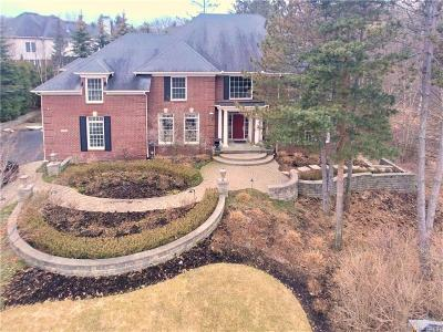 West Bloomfield Twp Single Family Home For Sale: 6728 Minnow Pond Drive