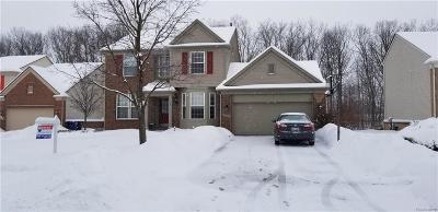 Westland Single Family Home For Sale: 8119 Creekside Drive