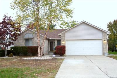 Macomb County, Oakland County Single Family Home For Sale: 6606 Marten Knoll Drive