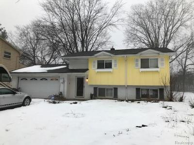 Oakland County Single Family Home For Sale: 2295 Old Salem Road