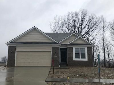 Single Family Home For Sale: 50037 Alden