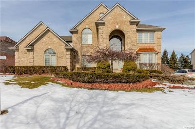 Northville Twp MI Single Family Home For Sale: $559,900