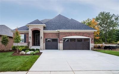 Washington Twp Single Family Home For Sale: 7065 Venturi Drive