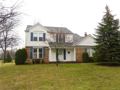 Novi Single Family Home For Sale: 21734 Worcester Drive