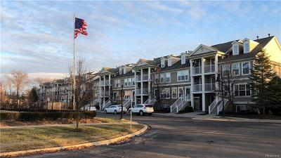 Troy Condo/Townhouse For Sale: 1108 Faulkner