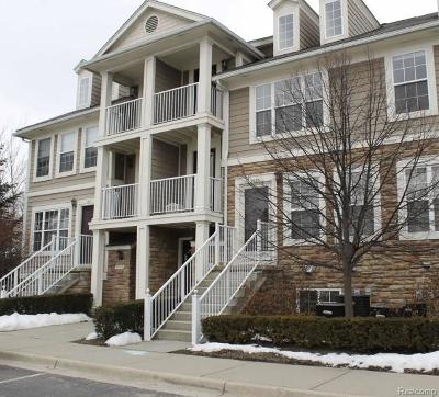 Troy Condo/Townhouse For Sale: 1079 Beaver Run