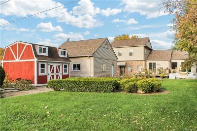 Fraser Single Family Home For Sale: 31680 Linden
