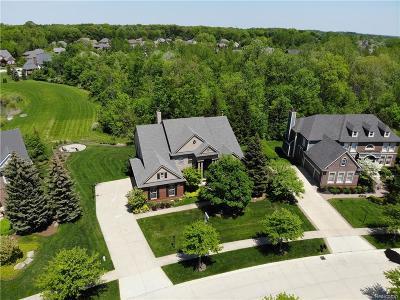 Novi Single Family Home For Sale: 46986 Sunnybrook Lane