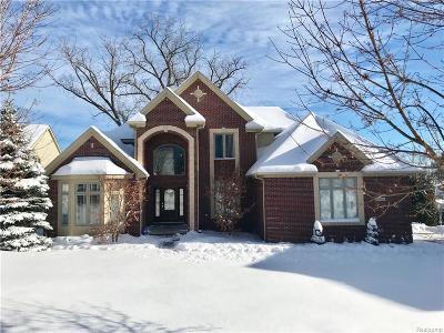 Commerce Twp Single Family Home For Sale: 4516 Darlene Drive