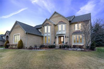Rochester Hills Single Family Home For Sale: 3736 Newcastle Drive