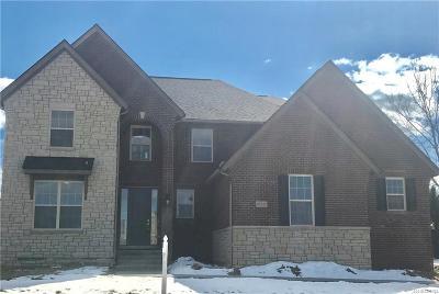 Novi Single Family Home For Sale: 47615 Alpine Drive