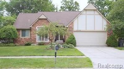 Clinton Twp Single Family Home For Sale: 20330 Saint Laurence Drive