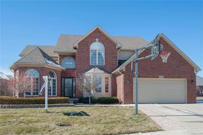 Macomb Twp MI Single Family Home For Sale: $419,900