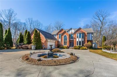 Clinton Twp Single Family Home For Sale: 41645 Little Road