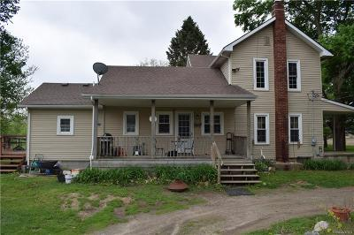 Livingston County Single Family Home For Sale: 9352 N Nicholson Road