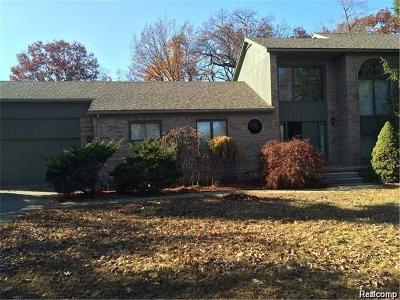 Dearborn Single Family Home For Sale: 17782 W Outer Drive
