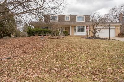 Farmington Single Family Home For Sale: 31165 Applewood Lane