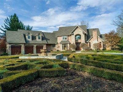 Novi Single Family Home For Sale: 46000 W 11 Mile Road