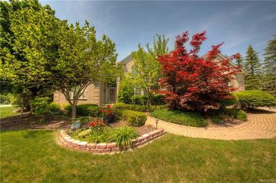 Plymouth Twp Single Family Home For Sale: 50400 E Fellows Creek Court