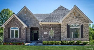 Oxford Single Family Home For Sale: 617 Overlook Drive