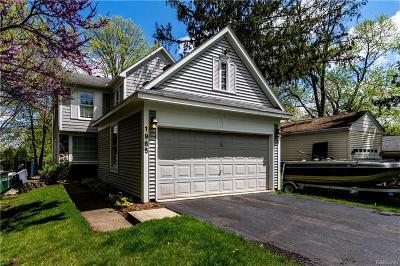 West Bloomfield, West Bloomfield Twp Single Family Home For Sale: 1965 Auburndale Avenue