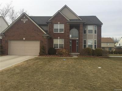 Troy Single Family Home For Sale: 1171 Cambria Drive