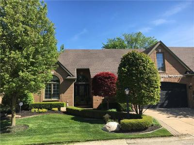 Clinton Twp Condo/Townhouse For Sale: 18765 River Pointe Drive