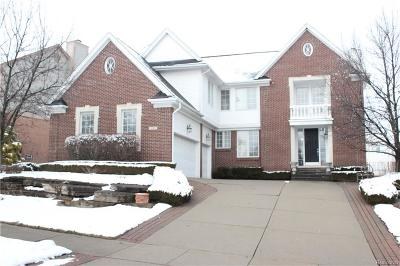 Rochester, Rochester Hills Single Family Home For Sale: 1261 Putnam Circle