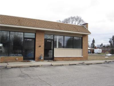 Commercial For Sale: 37135 Goddard Road