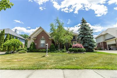 West Bloomfield, West Bloomfield Twp Single Family Home For Sale: 6346 Branford
