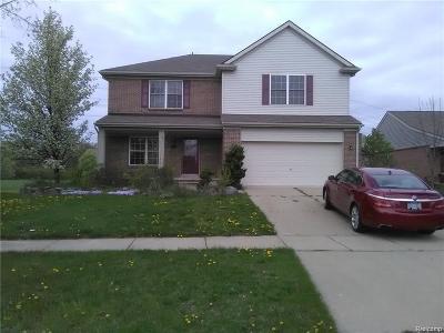 Van Buren Twp Single Family Home For Sale: 13632 Country Walk Boulevard