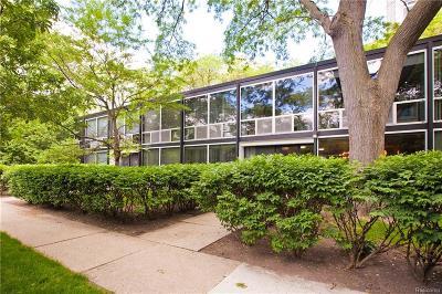 Detroit Condo/Townhouse For Sale: 1343 Nicolet Pl