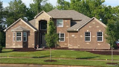 Canton, Canton Twp Single Family Home For Sale: 47431 Ellery Lane