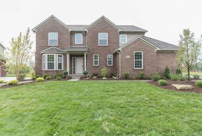 Single Family Home For Sale: 47418 Ellery Lane