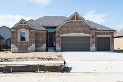 Macomb Twp Single Family Home For Sale: 55211 Hidden River Drive