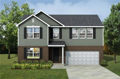 Huron Twp Single Family Home For Sale: 28622 Dawnridge Drive