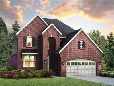 Northville Single Family Home For Sale: 47765 Fieldstone Drive