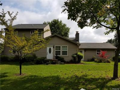 West Bloomfield, West Bloomfield Twp Single Family Home For Sale: 5136 Latimer Street