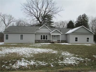 Single Family Home For Sale: 16490 Homer Street