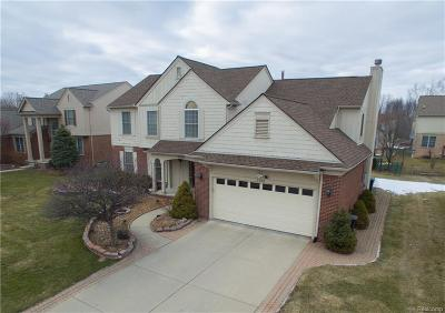 Sterling Heights Single Family Home For Sale: 2103 Edgestone Drive