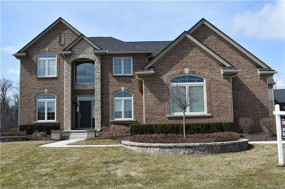 Commerce Twp Single Family Home For Sale: 5802 Strawberry Circle
