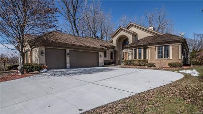 Dearborn Single Family Home For Sale: 20 Prestwick Court